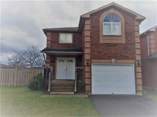 60 Clute Cres