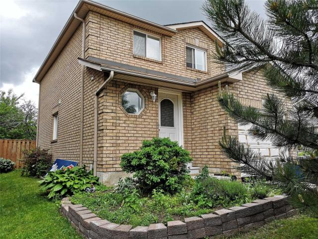 61 Clute Cres