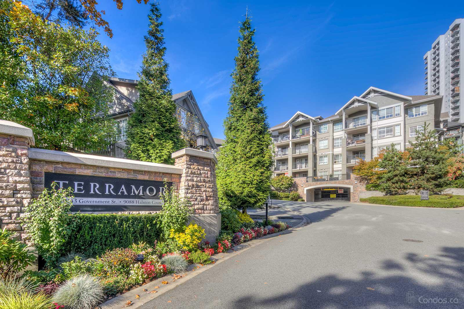 Terramor at 9133 Government St, Burnaby 0