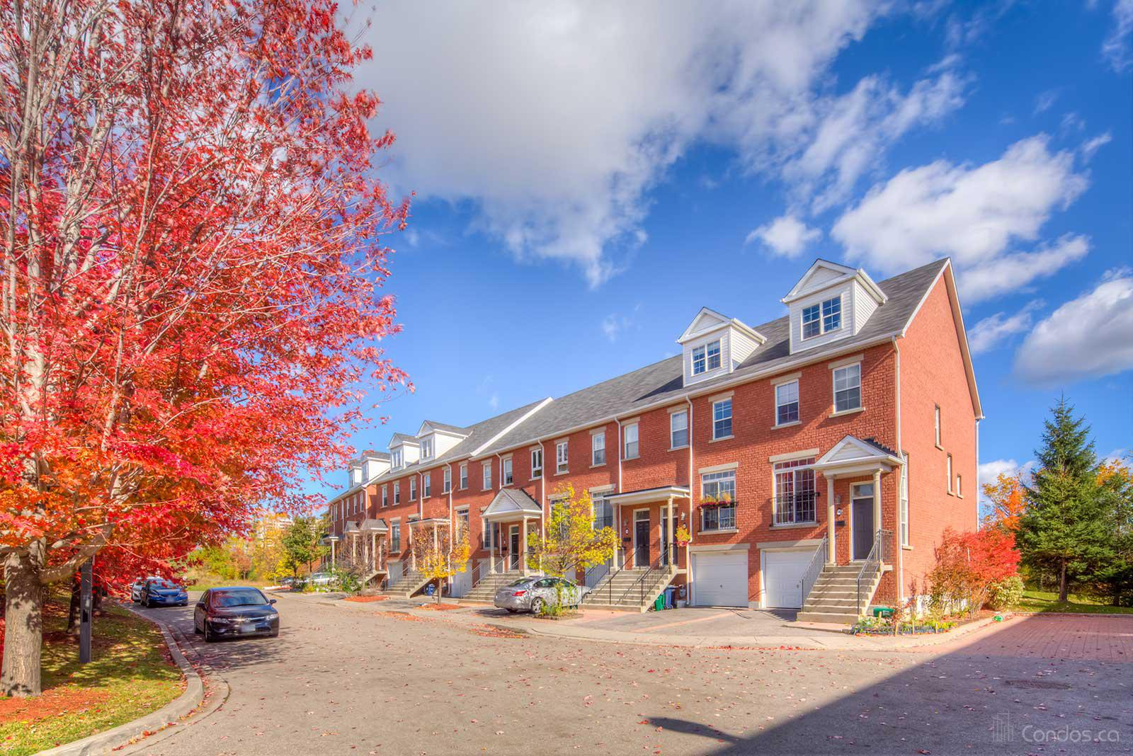 1723 Finch Avenue West Townhomes at 1723 Finch Ave W, Toronto 0