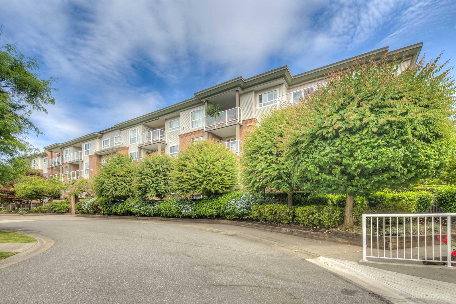Abbey Road at 15885 84 Ave, Surrey 0