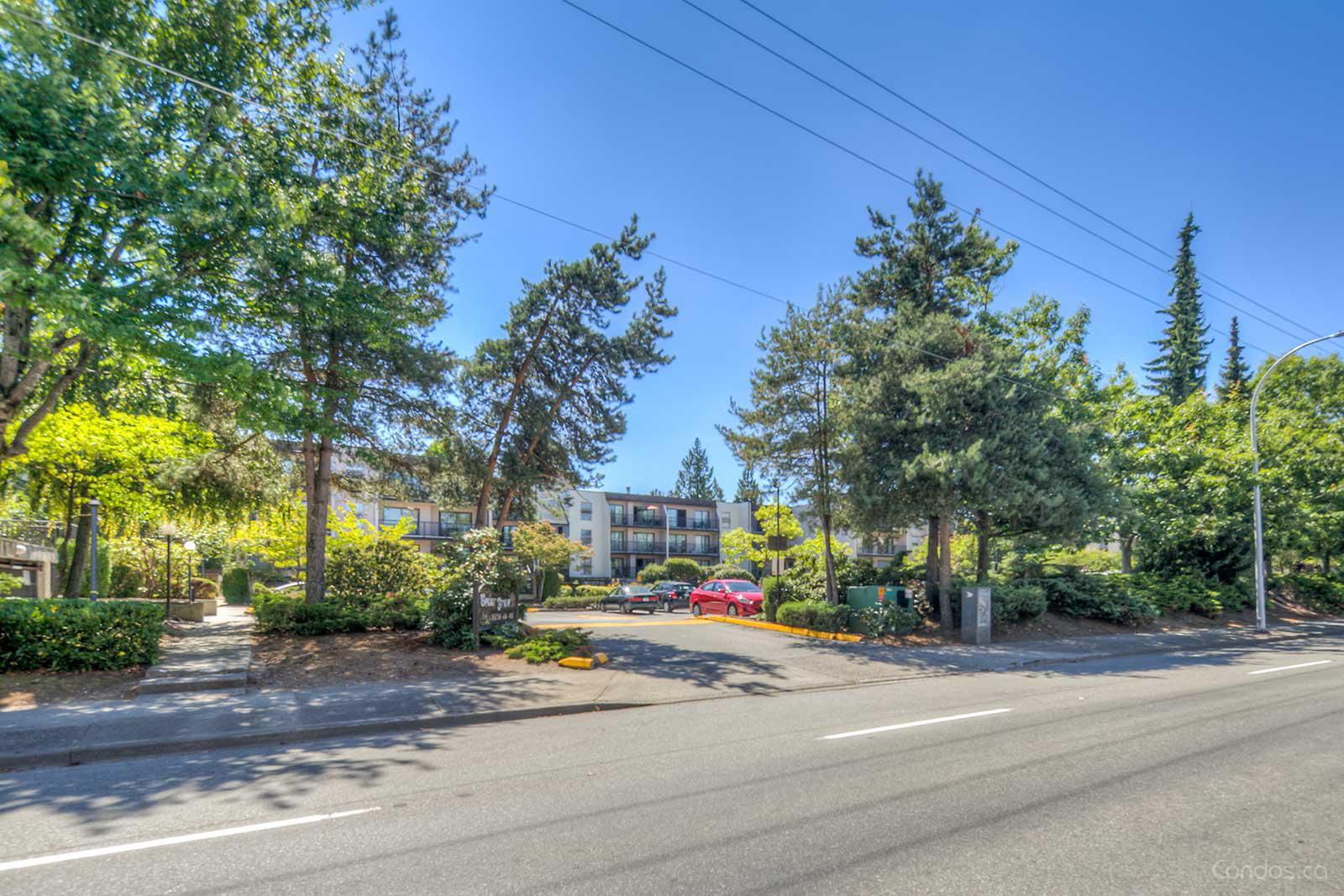 Cedar Grove at 15268 100 Ave, Surrey 1