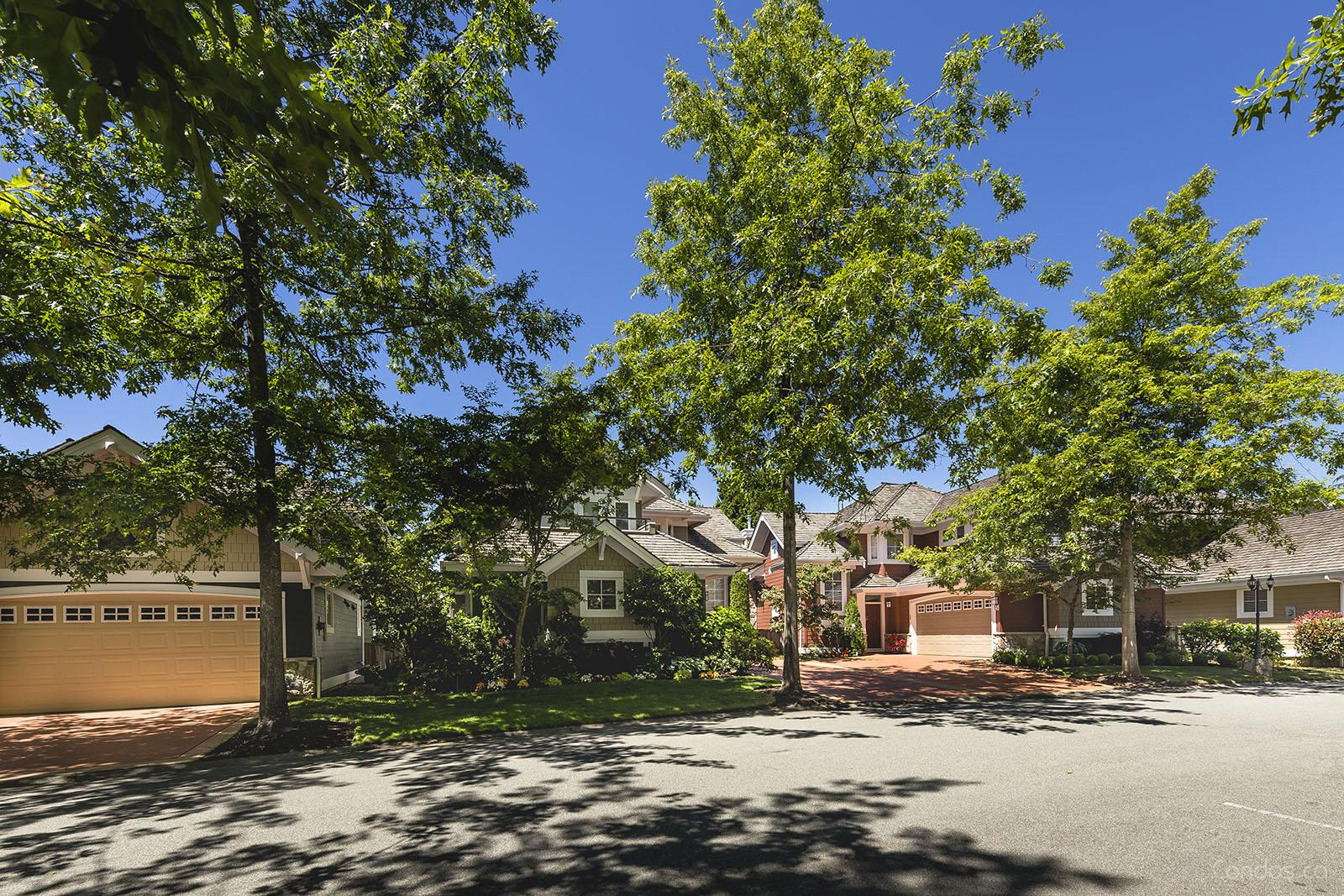 High Grove at 15055 20 Ave, Surrey 1