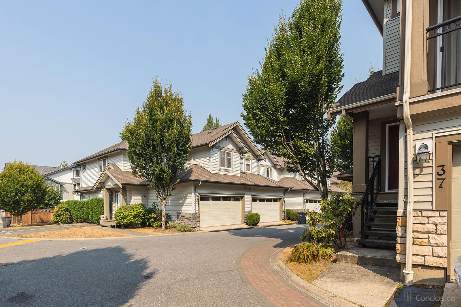 Sequoia Green at 14453 72 Ave, Surrey 0