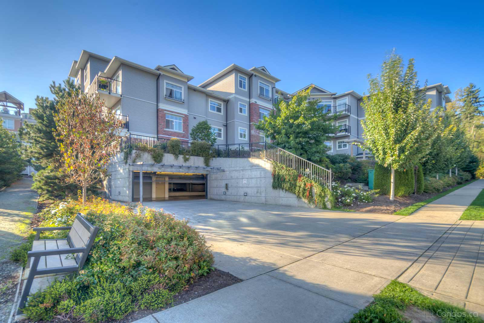 Willow Grand at 19533 64 Ave, Surrey 1