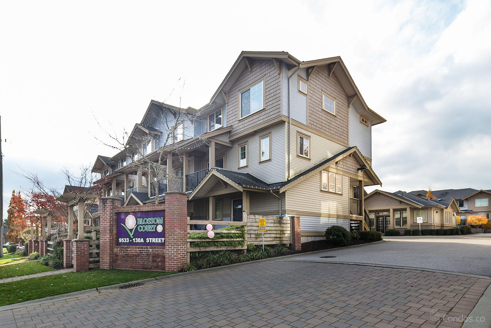 Blossom Court at 9533 130a St, Surrey 0