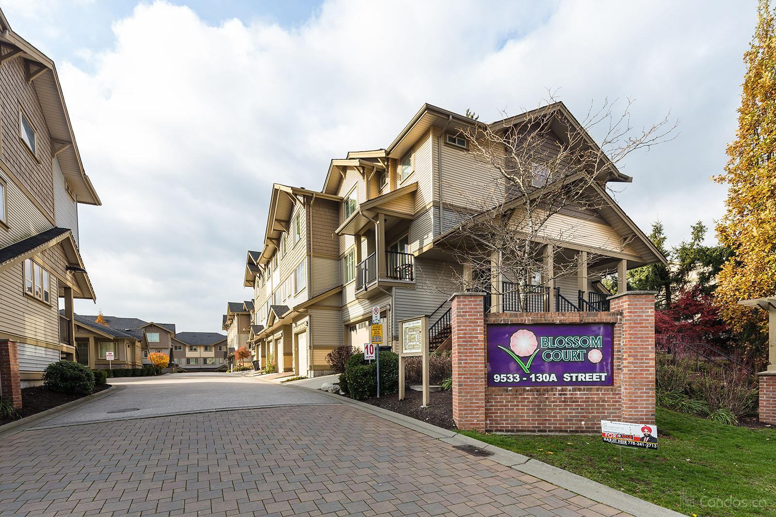 Blossom Court at 9533 130a St, Surrey 1