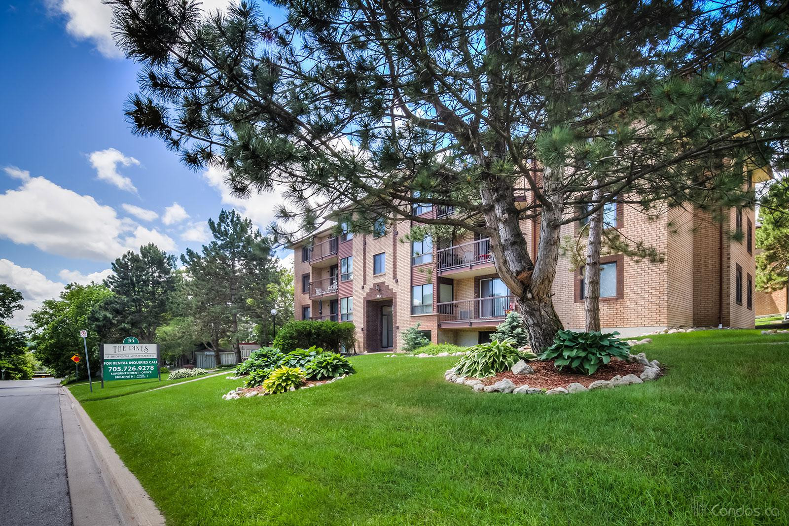 The Pines at 34 Johnson St, Barrie 0