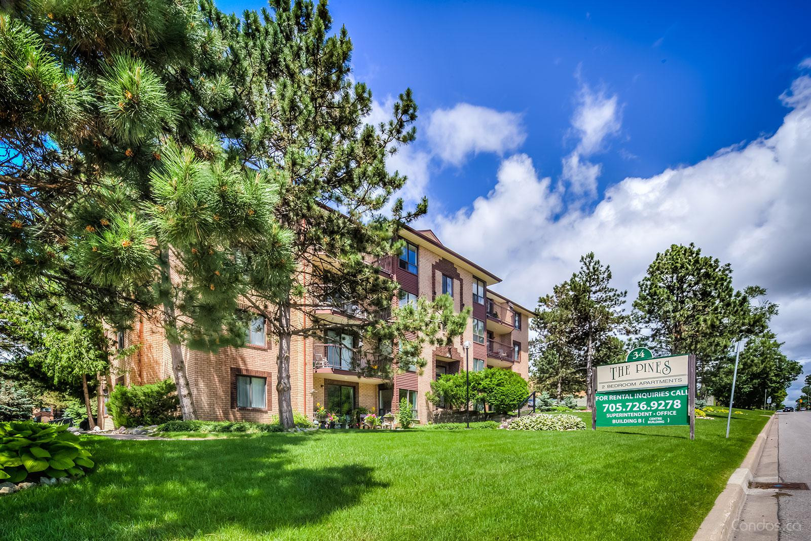 The Pines at 34 Johnson St, Barrie 1